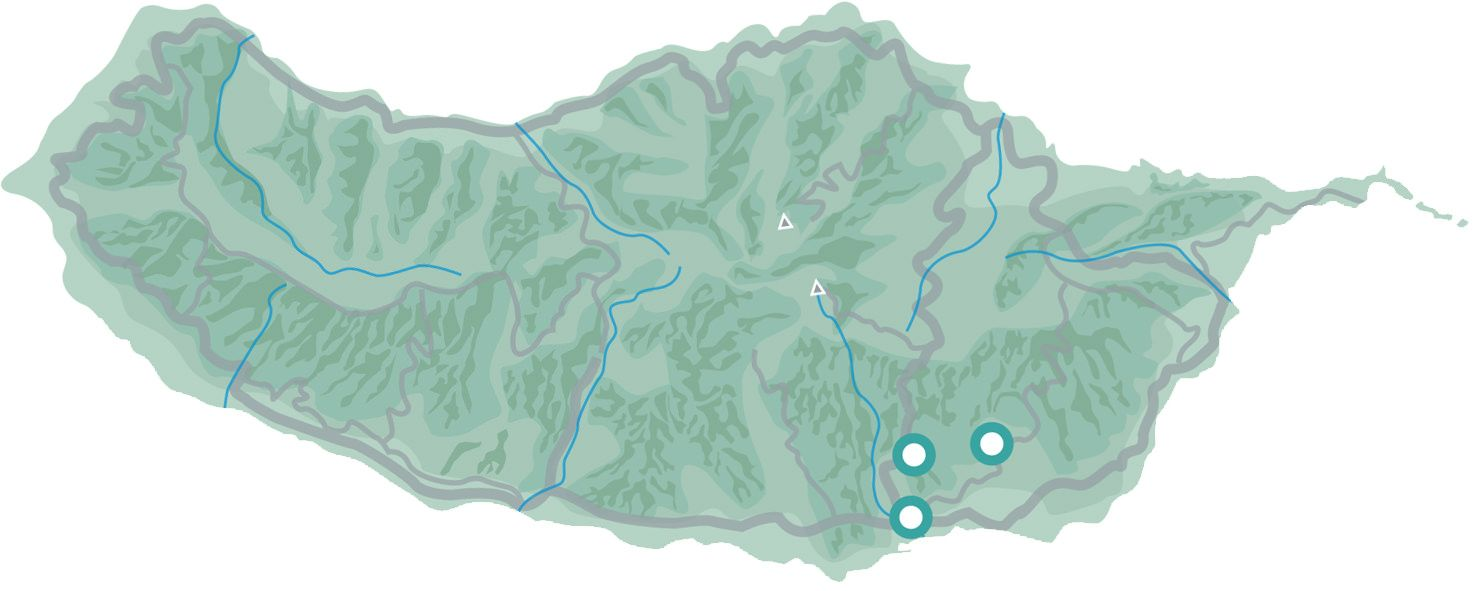 Madeira Wine Tour Map