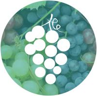Madeira wine Icon